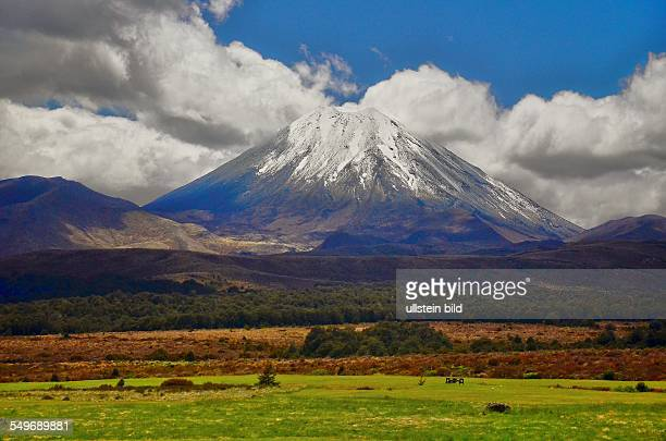 Neuseeland der 2291 m hohe Vulkan Mount Ngauruhoe im TongariroNationalpark Der Nationalpark mit seinen drei aktiven Vulkanen ist der vierte...