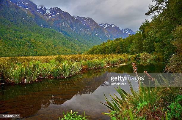 Neuseeland im Fiordland Nationalpark liegen auch die Mirror Lakes kleine spiegelglatte Bergseen