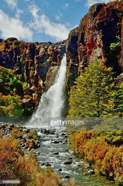 Neuseeland TaranakiWasserfall und Bach im Tongariro Nationalpark Der Nationalpark mit seinen drei aktiven Vulkanen ist der vierte Nationalpark der...