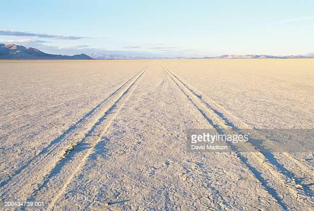 USA, Nevada, Black Rock Desert, tire tracks across desert