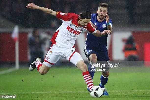 Neven Subotic of Koeln is challenged by Guido Burgstaller of Schalke during the Bundesliga match between 1 FC Koeln and FC Schalke 04 at...