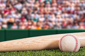 A low angle view of a new baseball and a new wooden bat with a green padded wall and a crowd in the background for a daytime game.