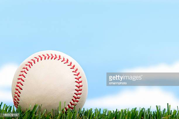 New Baseball in Grass against blue sky