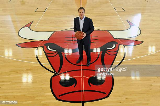 New Chicago Bulls Head Coach Fred Hoiberg poses for a picture following a press conference on June 2 2015 at the Advocate Center in Chicago Illinois...