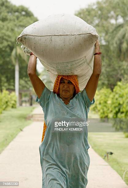 An Indian labourer carries a sack of grass cuttings away from a freshly mown lawn at Humayun's Tomb in New Delhi 13 June 2007 The tomb was built in...