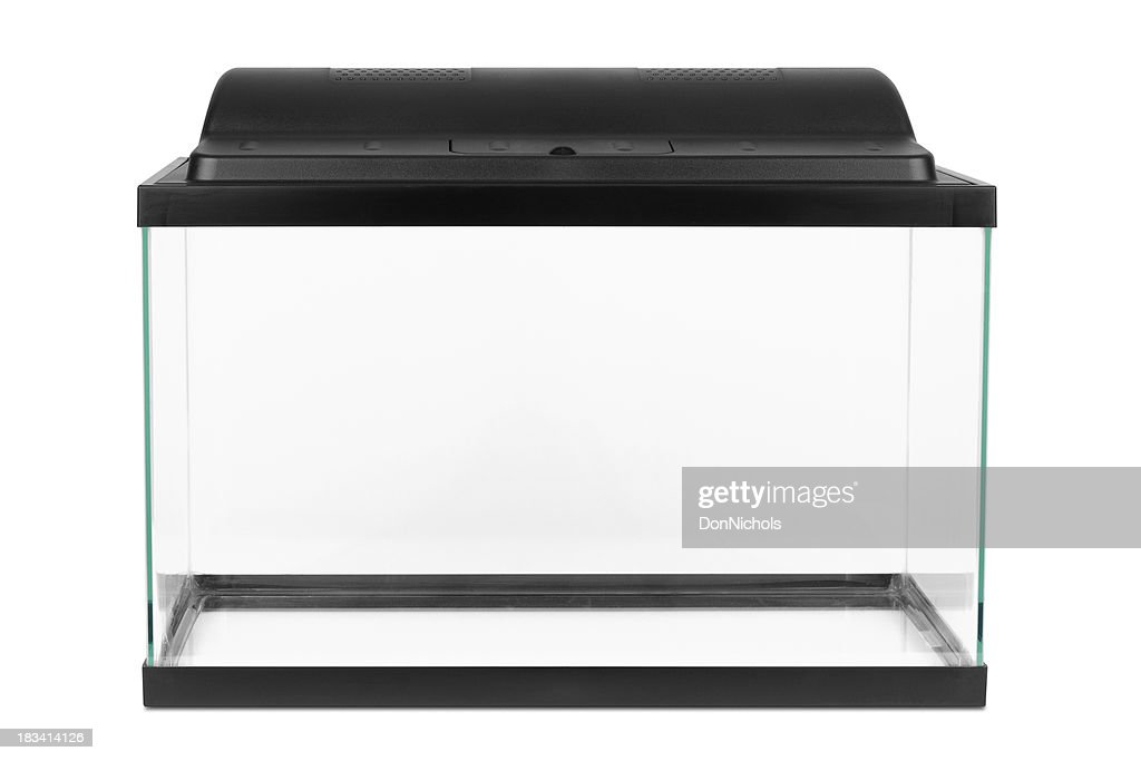New empty fish tank stock photo getty images for Empty fish tank