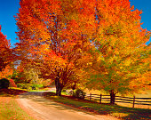 New England autumn country road