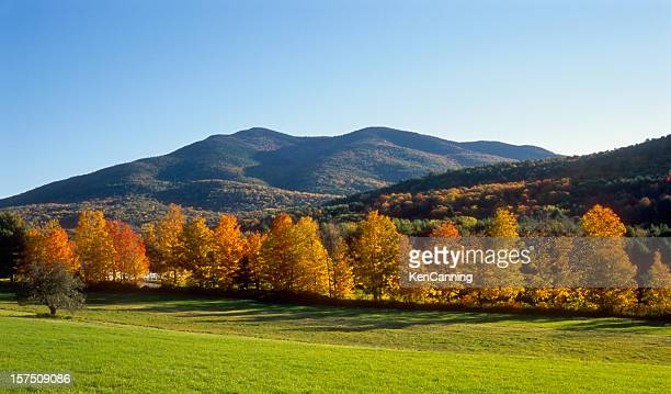 New England Autumn Field and Mountains