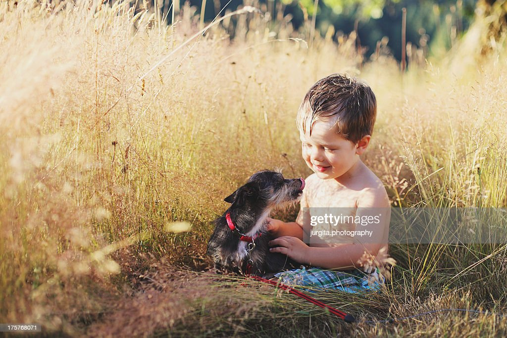 New friend puppy : Stock Photo