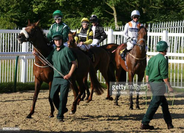 New handlers help jockey's with their horses into the stalls The new handlers got off to a troublefree start with relatively few problems before the...