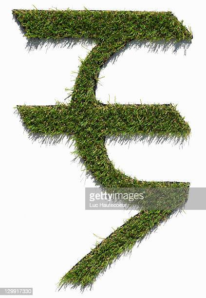 new Indian rupee symbol in grass