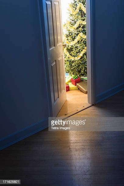 USA, New Jersey, Jersey City, Christmas tree in doorway