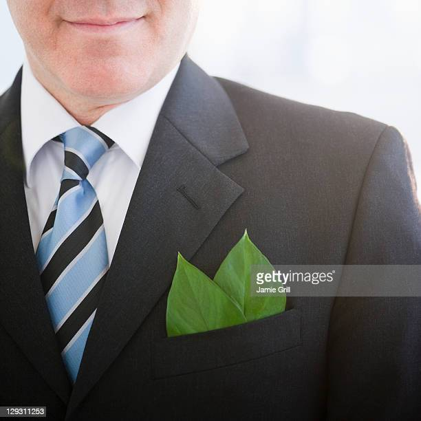 USA, New Jersey, Jersey City, Close up of businessman with leaf in pocket square
