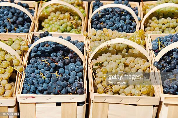 USA, New Jersey, Jersey City, Punnets of fresh grapes on market stall