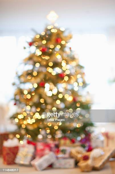 USA, New Jersey, New Jersey City, Christmas tree in living room