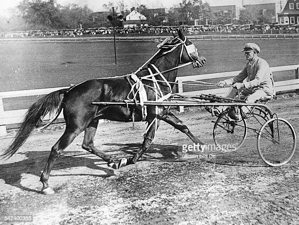 USA New Jersey Trenton Horse race At the harness racing week on the Freehold Raceway in New Jersey a reverse race with the sulky fixed in front of...