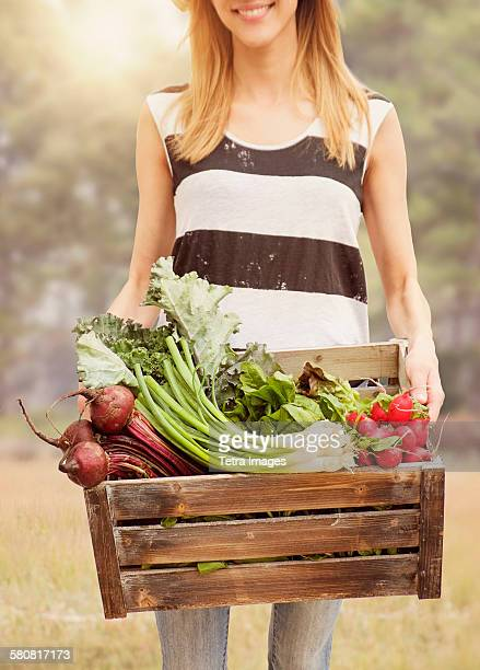 USA, New Jersey, Woman carrying fresh vegetables in box