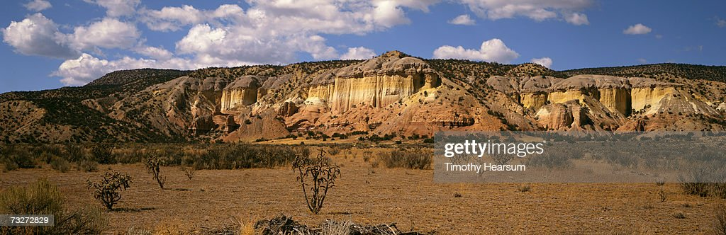 'USA, New Mexico, Ghost Ranch, near Abiquiu, red rock formation with cholla cactus and sagebrush' : Stock Photo