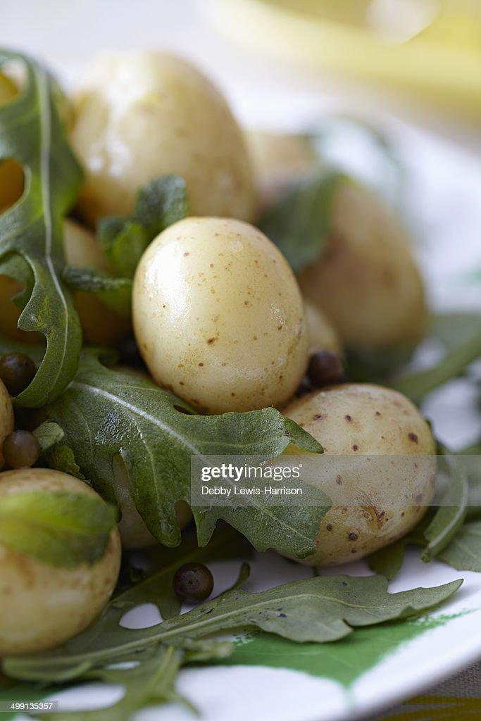 New potatoes and salad
