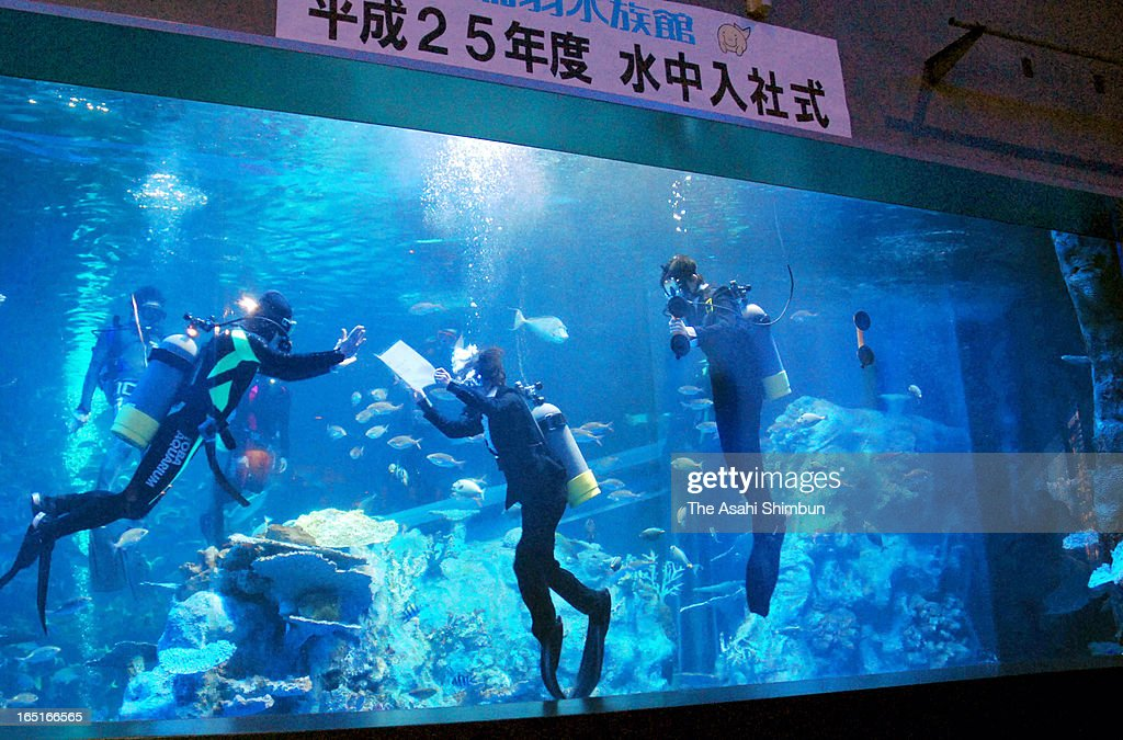 New recruit Shiho Endo (C) receives the letter of appointment in the watertank during their welcome ceremony at Toba Aquarium on March 31, 2013 in Toba, Mie, Japan.