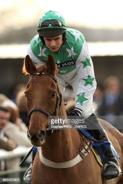 New Team ridden by Robert Walford before The totequadpot Roscoe Harvey Novices' Steeple Chase