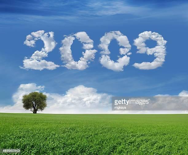 Nuovo anno 2009 e campo
