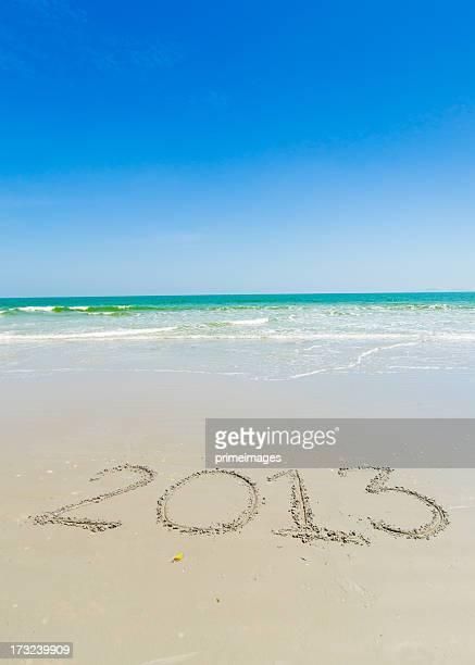 New Year Beach - 2013