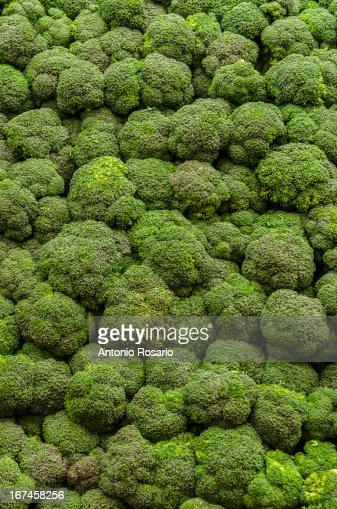 USA, New York, Brooklyn, Stack of broccoli : Stock Photo