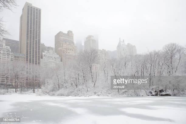 ニューヨークの冬