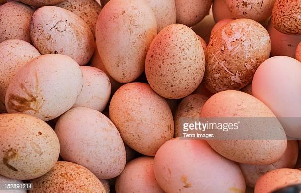 USA, New York City, Fresh eggs