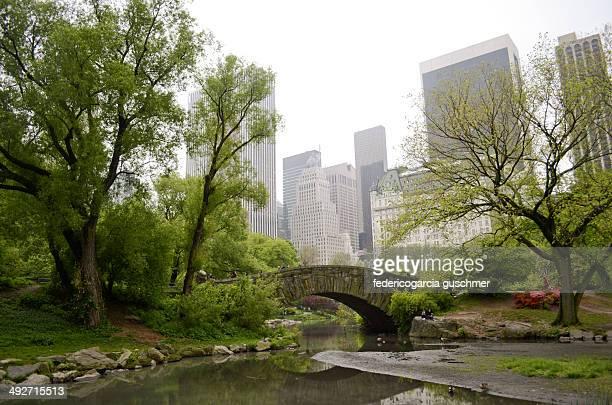 USA, New York City, Manhattan, Pond in Central Park