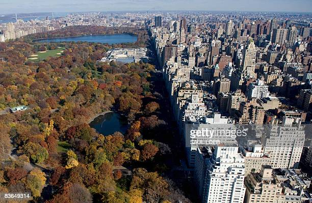 New York City's Central Park along Fifth Avenue is viewed in this aerial photograph from a helicopter over New York on November 11 2008 AFP PHOTO /...