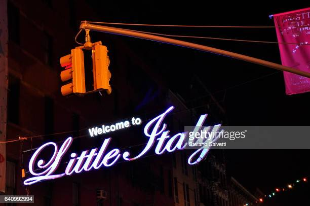 USA, New York, detail of neon signs in Little Italy by night