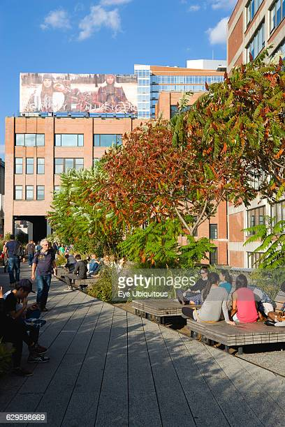 USA New York Manhattan people seated on benches and walking along a path beside plants in autumn colours on the sundeck leading to the Chelsea Market...