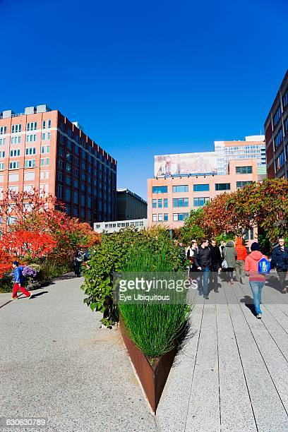 USA New York Manhattan people walking along the Sundeck beside plants in autumn colours leading to the Chelsea Market Passage on the High Line linear...