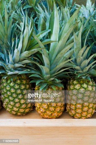 USA, New York, New York City, Brooklyn, Pineapples on market : Stock Photo