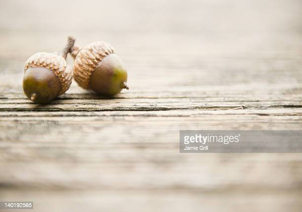 USA, New York, Putnam Valley, Roaring Brook Lake, Close up of acorns on pier