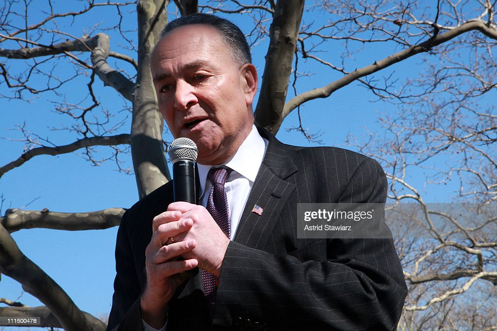 New York Senator <a gi-track='captionPersonalityLinkClicked' href=/galleries/search?phrase=Charles+Schumer&family=editorial&specificpeople=171249 ng-click='$event.stopPropagation()'>Charles Schumer</a> leads the 2011 Lustgarten Foundation's NY Pancreatic Cancer Research Walk at Riverside Park on April 3, 2011 in New York City.