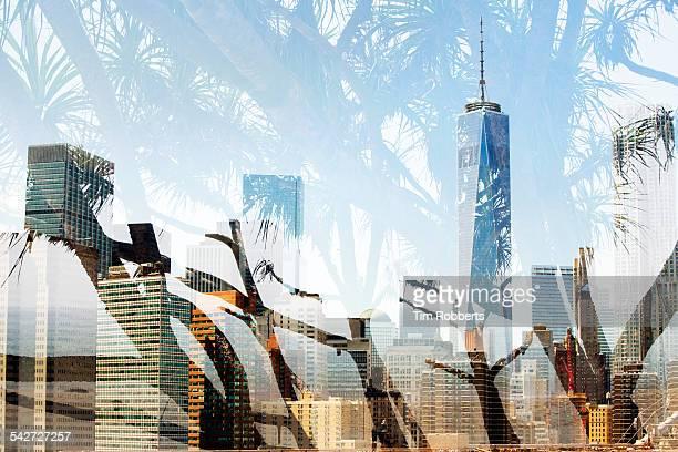 New York skyline with tree.