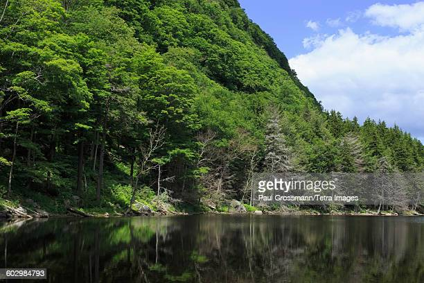 USA, New York State, Catskills, Forest covering mountain reflected in lake