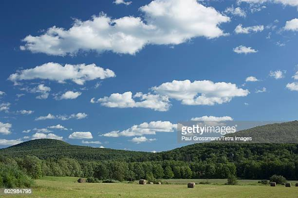 USA, New York State, Catskills, Landscape with field, hay bales and hills