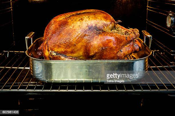USA, New York State, New York City, Roasted turkey for Thanksgiving in oven