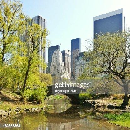 USA, New York State, New York City, skyline from Central Park