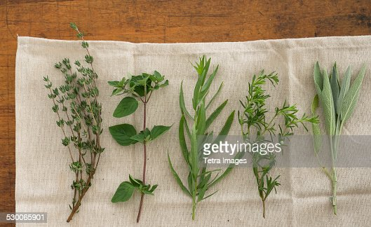 USA, New York State, New York City, Variation of herbs on table