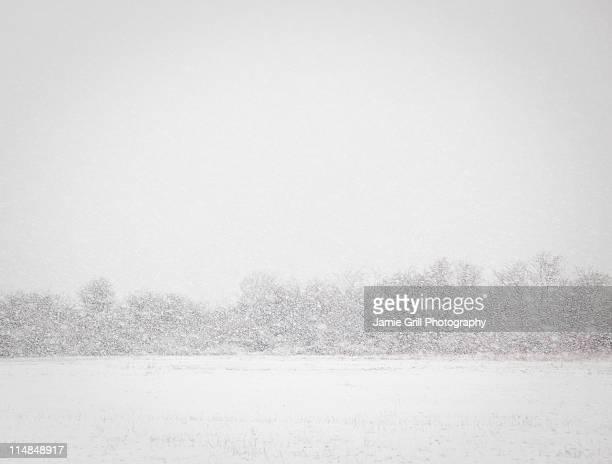 USA, New York State, Rockaway Beach, snowstorm