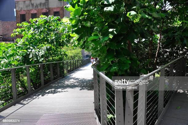 USA, New York, the High Line