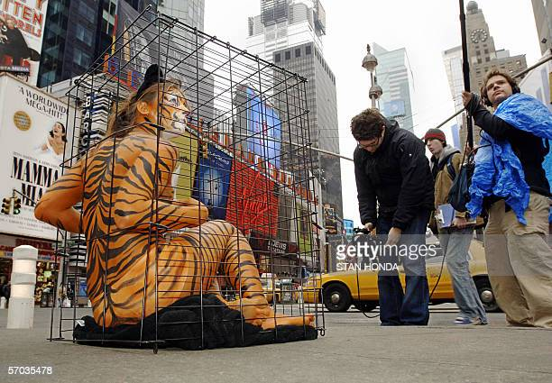 Amy Jannette her nearlynude body painted like a tiger is videotaped as she sits in a cage 09 March 2006 in New York's Times Square as part of a PETA...
