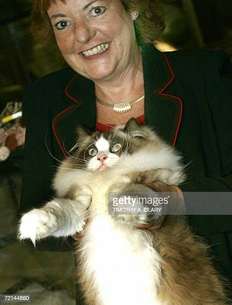 Denise Christensen holds her ragdoll cat during the press preview 11 October 2006 at the 4th Annual CFA Iams Cat Championship hosted by the Cat...