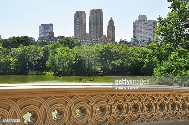 New York, view building from Central Park
