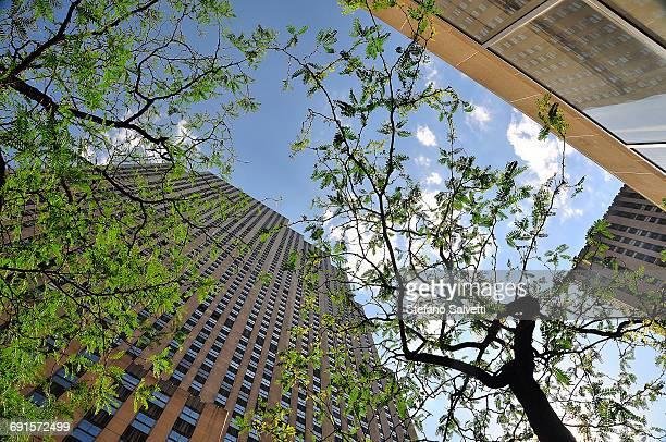 New York, view sky-scraper